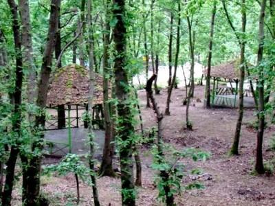 پارک جنگلی سروان